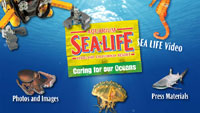SEALIFE Press Kit